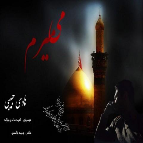 دانلود موزیک جدید هادی حبیبی میمیرم