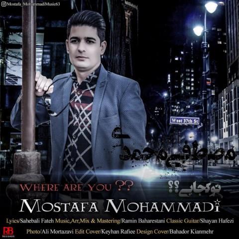 دانلود موزیک جدید مصطفی محمدی تو کجایی