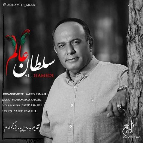 دانلود موزیک جدید علی حامدی سلطان عالم