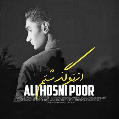 دانلود موزیک جدید علی حسنی پور از تو گذشتم