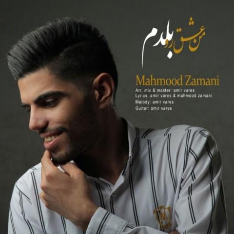 دانلود موزیک جدید محمود زمانی من عشقو بلدم