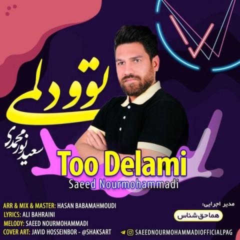 دانلود موزیک جدید سعید نورمحمدی تو دلمی