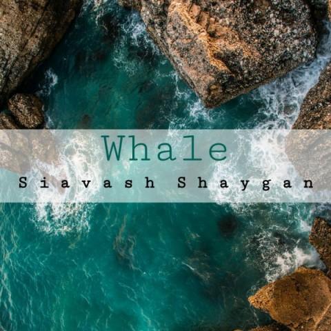 دانلود موزیک جدید سیاوش شایگان نهنگ