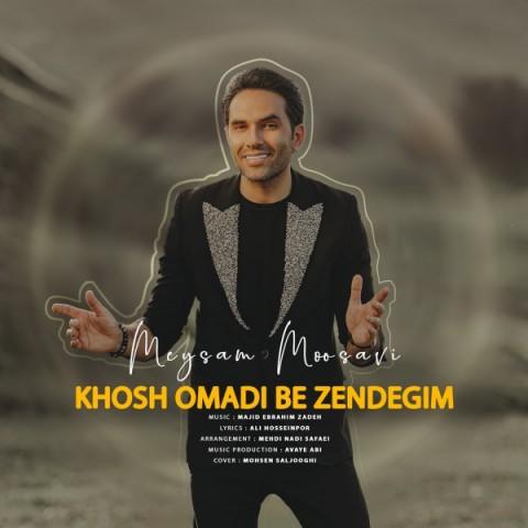 دانلود موزیک جدید میثم موسوی خوش اومدی به زندگیم