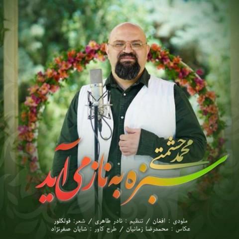 دانلود موزیک جدید محمد حشمتی سبزه به ناز می آید